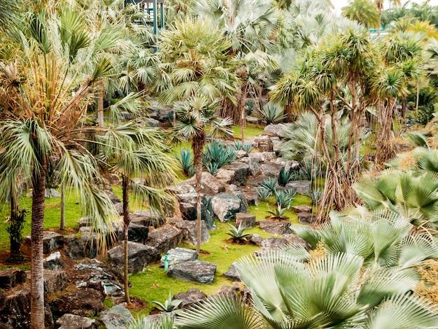 Projeto de paisagem de luxo do jardim tropical. bela vista da paisagem tropical