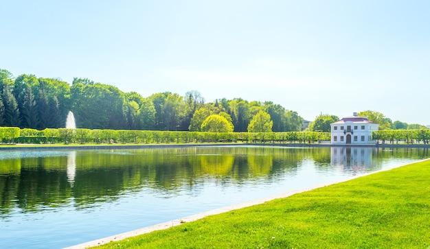 Projeto de paisagismo. beco do parque perto do palácio petergof no verão.