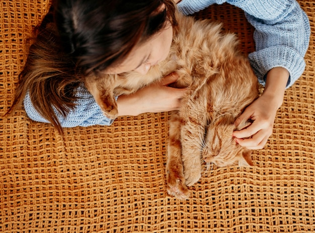 Proprietário acariciando gato adorável