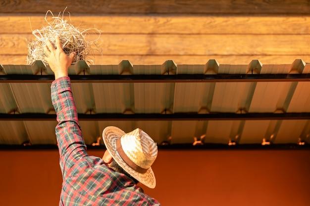 Proprietário da casa, removendo o ninho de pássaro do telhado da casa