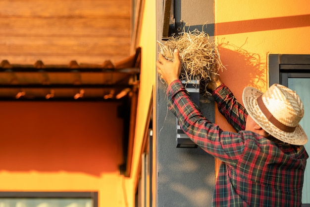 Proprietário de casa, removendo o ninho de pássaro da parede da casa