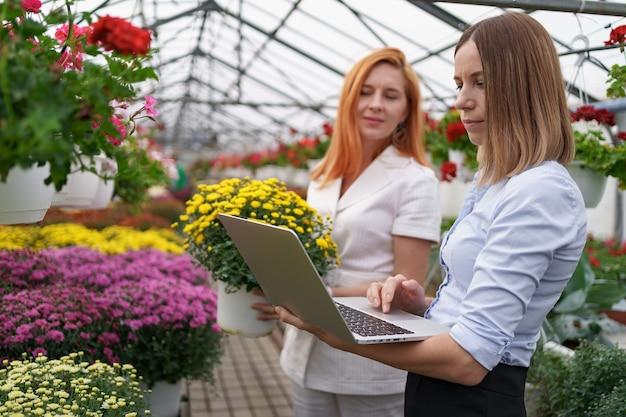 Proprietário de estufa apresentando opções de flores para um cliente varejista em potencial usando um laptop.