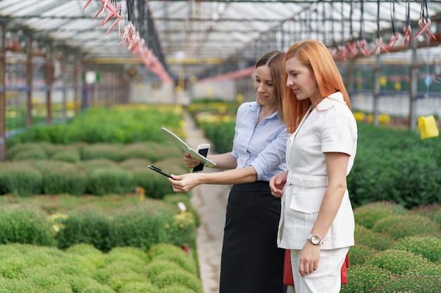 Proprietário de estufa apresentando opções de flores para um cliente varejista em potencial.
