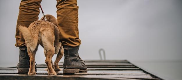 Proprietário, protegendo seu cão da chuva