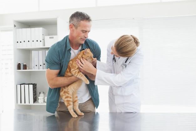 Proprietário segurando seu gato como veterinário examina