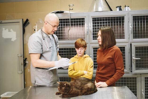 Proprietários de um gato fofo conversando com o veterinário sobre sua saúde na clínica