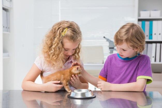 Proprietários felizes acariciando seu gato comendo