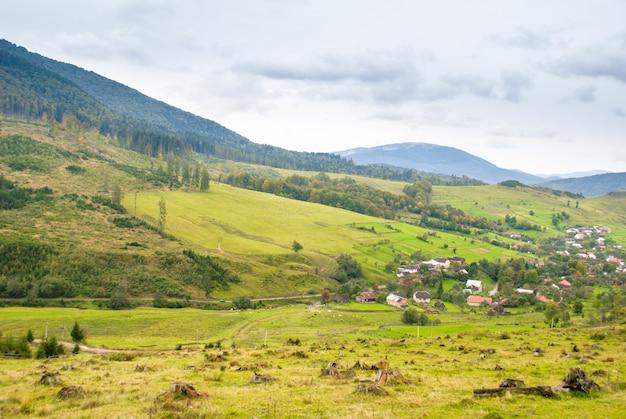 Proteção ambiental, tocos de árvores em primeiro plano e aldeia