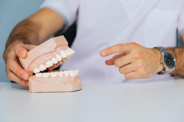 Próteses falsas - um técnico de prótese dentária segura uma mandíbula falsa na mão.