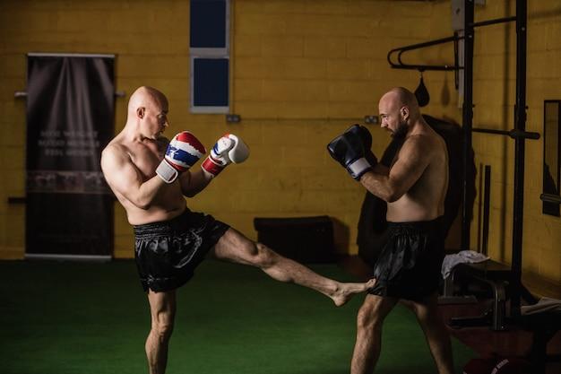 Pugilistas tailandeses praticando boxe