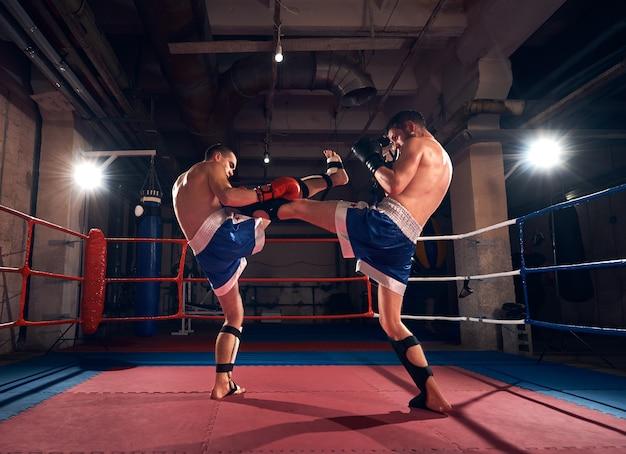 Pugilistas treinando kickboxing no ringue na academia