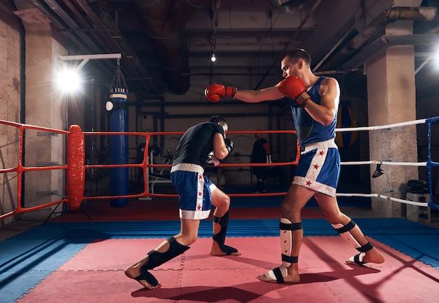 Pugilistas treinando kickboxing no ringue no health club