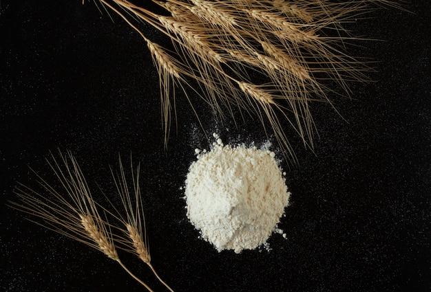 Punhado da farinha e espigas no fundo preto