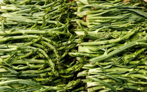 Puntarelle, chicória de aspargos em um mercado de fazendeiros