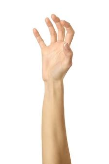 Puxar, agarrar, alcançar ou arranhar. mão da mulher com manicure francesa gesticulando isolado no fundo branco. parte da série
