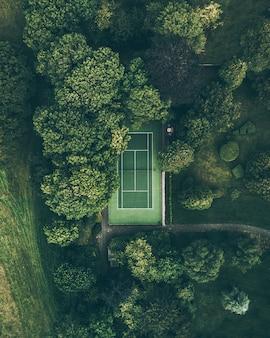 Quadra de tênis na floresta