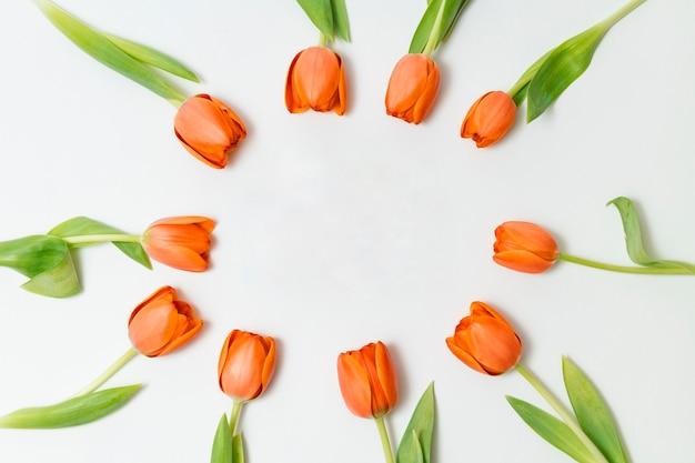 Quadro bonito feito de tulipas alaranjadas