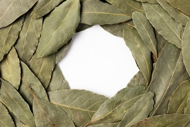 Quadro circular de vista superior com ervas