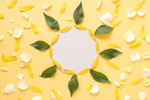 Quadro circular decorado com folhas e pétalas em fundo amarelo