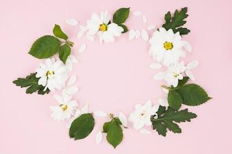 Quadro circular feito com flores brancas e folhas no fundo rosa