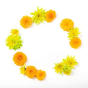 Quadro circular feito com flores de crisântemo em fundo branco