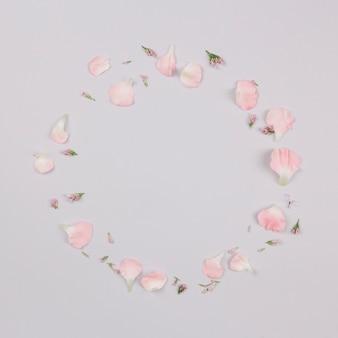 Quadro circular feito com pétalas isoladas no fundo branco
