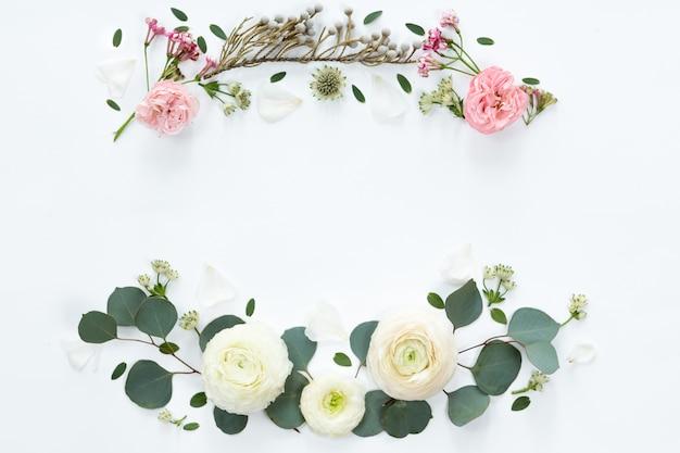 Quadro com as flores brancas do ranúnculo no fundo branco. vista plana leiga, superior.