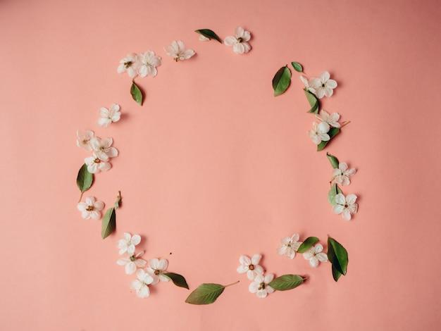 Quadro com flores de cerejeira, fundo de flor de primavera, vista superior, configuração plana, quadro, copie o espaço.