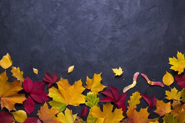 Quadro com folhas de maple outono. modelo de natureza queda para design, menu, cartão postal, banner, bilhete, folheto, cartaz. sobre um fundo escuro