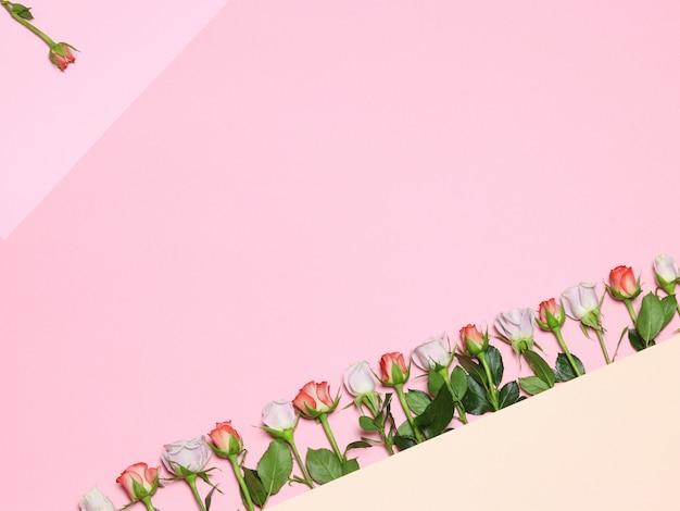 Quadro com rosas. rosas cor de rosa e brancas. fundo rosa de férias