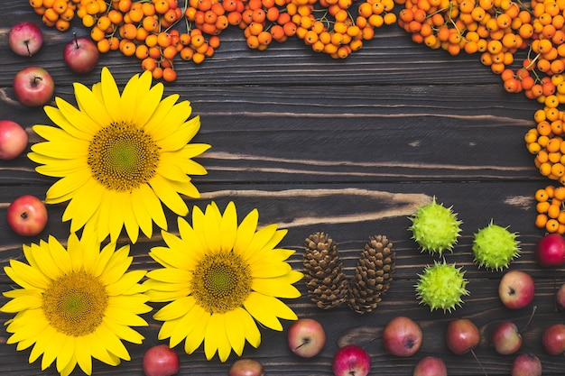 Quadro de colheita de outono com bagas e maçãs de rowan.