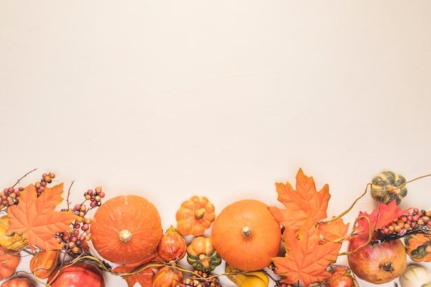 Quadro de comida de vista superior com folhas