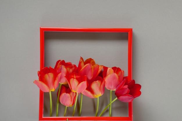 Quadro de flor. cartão de flor. tulipas vermelhas em moldura vermelha