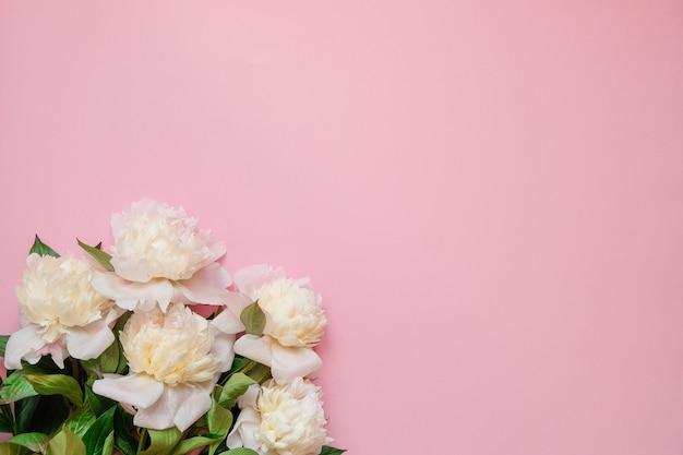 Quadro de flor com frescos ramos de peônia branca em fundo rosa com espaço de cópia