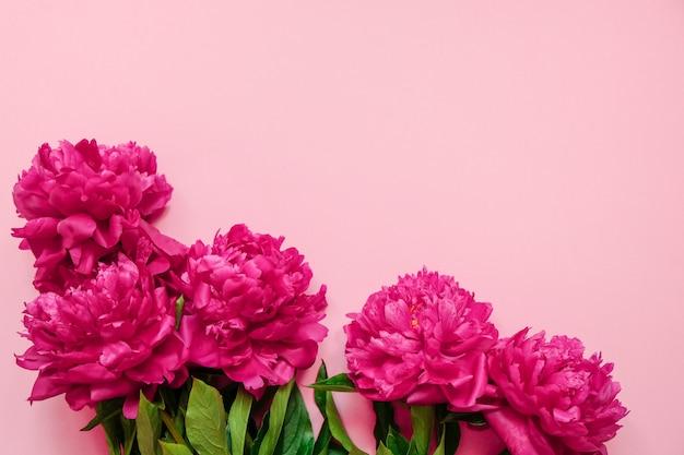 Quadro de flor com frescos ramos de peônia rosa sobre fundo rosa pastel com espaço de cópia