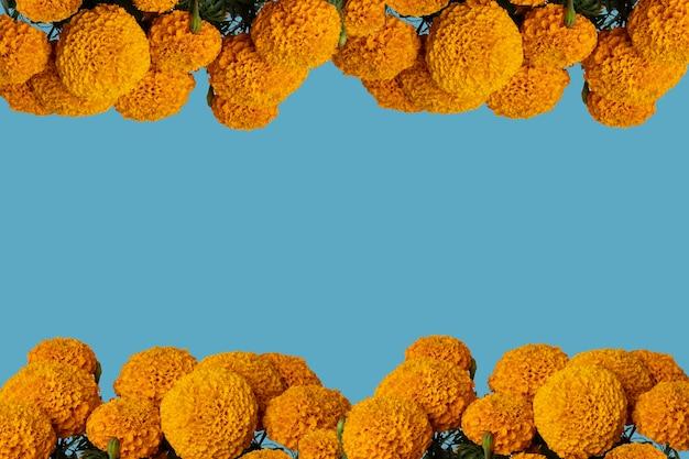 Quadro de flores cempasuchil com fundo colorido e espaço para texto