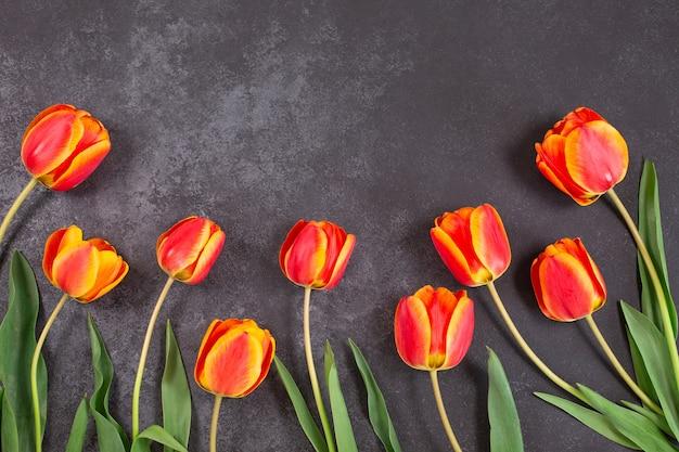 Quadro de flores coloridas de tulipas na superfície escura