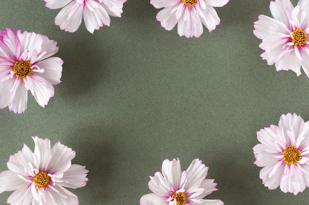 Quadro de flores cor de rosa naturais sobre fundo verde com espaço de cópia. primavera, bordo de verão para seu projeto. vista superior flat lay.