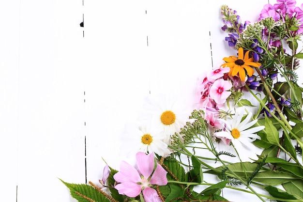 Quadro de flores da primavera canto borda de flores silvestres