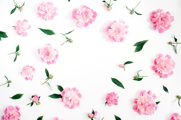 Quadro de flores de peônia rosa, ramos, folhas e pétalas com espaço para texto em fundo branco. camada plana, vista superior