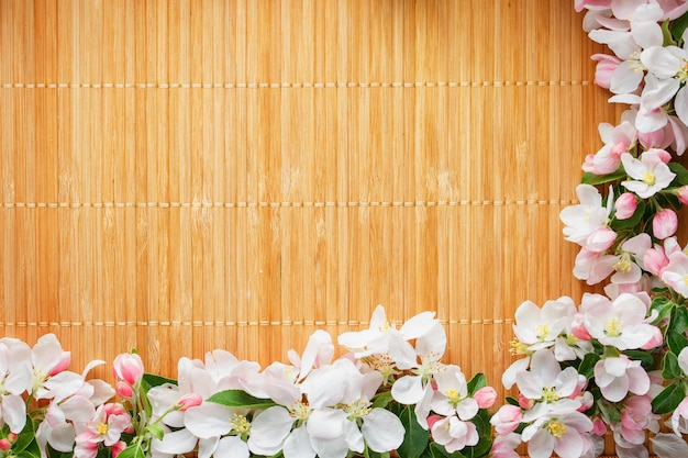 Quadro de flores de primavera de sakura em bambu