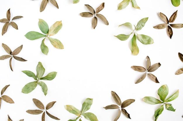 Quadro de flores, folhas e pétalas
