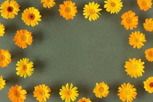 Quadro de flores laranja naturais de calêndula sobre fundo verde com espaço de cópia. primavera, bordo de verão para seu projeto. vista superior flat lay