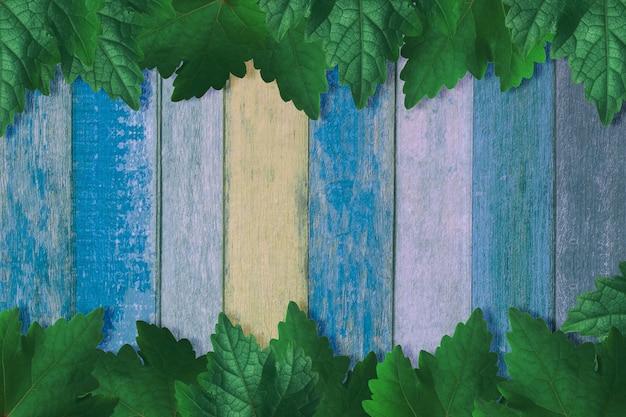 Quadro de folha de uva em piso de madeira turquesa azul e verde