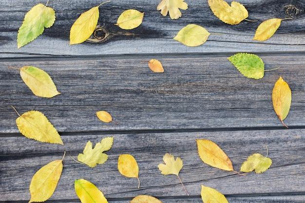 Quadro de folhas amarelas, fundo de madeira.