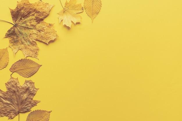 Quadro de folhas coloridas em fundo amarelo com espaço de cópia. conceito de halloween ou ação de graças.