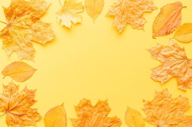 Quadro de folhas coloridas em fundo amarelo com espaço de cópia.