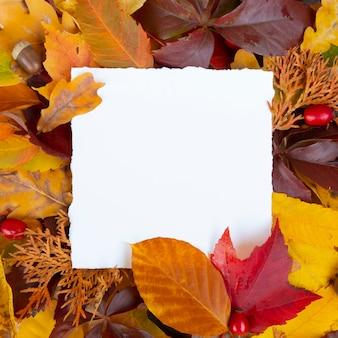 Quadro de folhas de outono coloridas com papel quadrado branco com espaço de cópia cartão olá outono