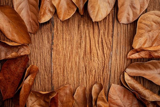 Quadro de folhas de outono em fundo de madeira antigo vintage