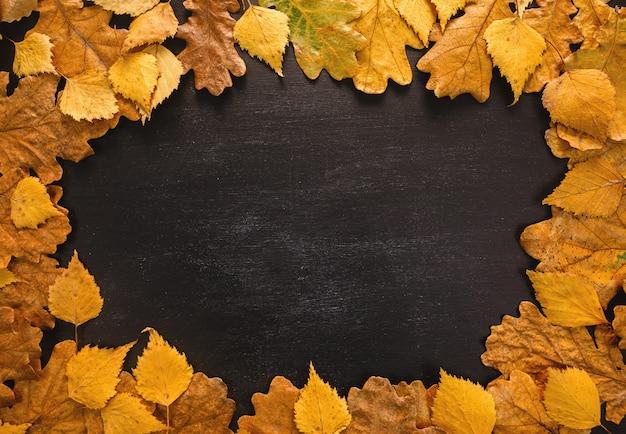 Quadro de folhas de outono em fundo de quadro de giz